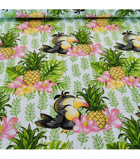 Ananas i ptaszek 0,1 mb